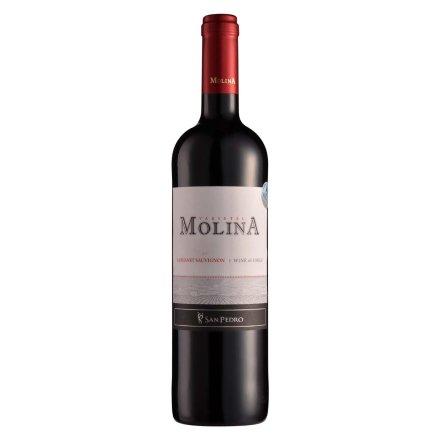【清仓】智利2012莫琳娜赤霞珠干红葡萄酒750ml