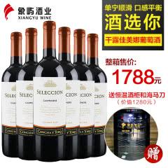 干露酒庄 智选佳美娜干红葡萄酒750ml*6 智利原瓶进口红酒