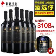 干露酒庄 智杰赤霞珠干红葡萄酒750ml*6 智利原瓶进口红酒