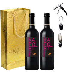 西班牙原瓶进口红酒布朗丘·拉波特干红葡萄酒750ml*2 送手提礼袋+海马刀+酒塞