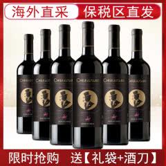 智利进口红酒中央山谷产区魔术师经典混酿干红葡萄酒750ml*6