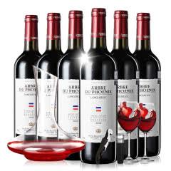 法国进口梧桐堡福特斯格干红葡萄酒750ml*6整箱装送高级醒酒器套装