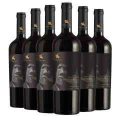 【高档礼盒装】智利进口红酒中央山谷产区石人珍藏14.3度干红葡萄酒750mlx6